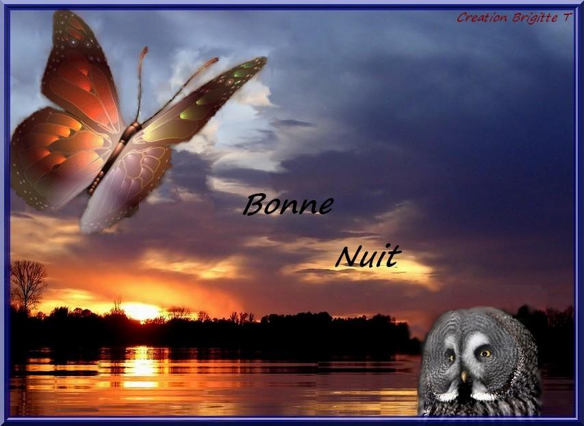 Bonne Nuit Africaine : Bonne nuit
